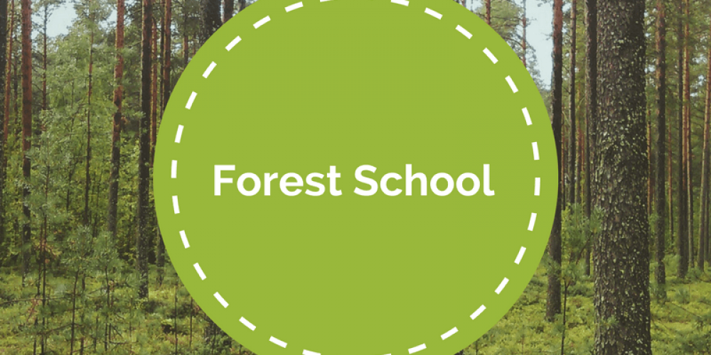 Forest School Day 4